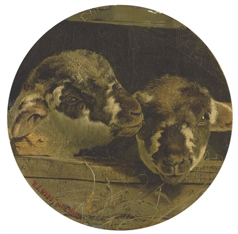 two lambs in a barn by william j webbe webb
