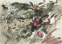 picking apples by andrew wyeth