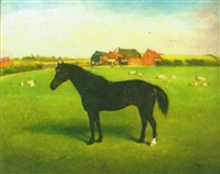 black pony in a landscape by f. hold