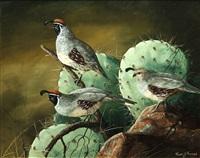 gambrels trio by trevor swanson