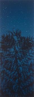 star field cypress by susan derges