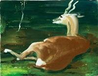 antilope by josef hegenbarth
