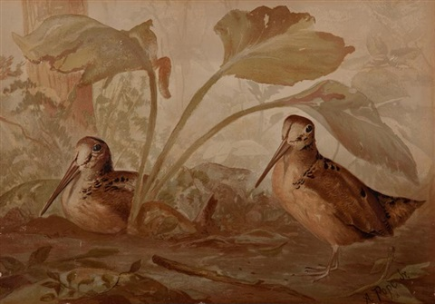upland game birds and waterfowl of the united states series 13 works by alexander pope