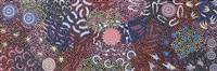 ceremony dancing/danse de cérémonie by nungarrayi michelle possum