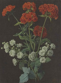still life with a spray of red verbena and white roses by alexis nicolas perignon the elder