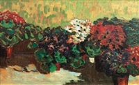 geraniums by arthur illies