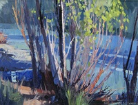 willows, taylor river by brian badcock