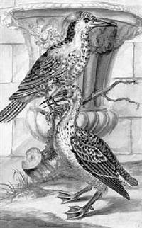 zwei exotische vögel vor einer urne by gottlieb reiber