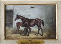 emilia, portrait de cheval by jonny audy