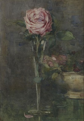 rose in a stem vase by constance walton