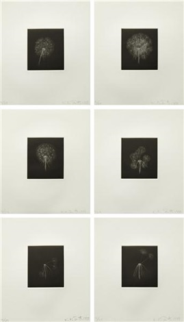 dandelions suite set of 6 by kiki smith