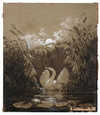 a swan amidst reed at moonlight, beating its wings by carl gustav carus
