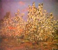 les pommiers en fleurs by sergei gusev