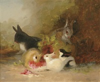 rabbits by mary russell smith