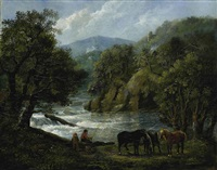 bewaldetes flusstal by johann conrad gessner