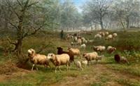 bewaldete landschaft mit schafherde by jan bedijs tom