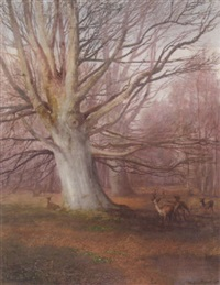 deer in a beech wood by sydney herbert