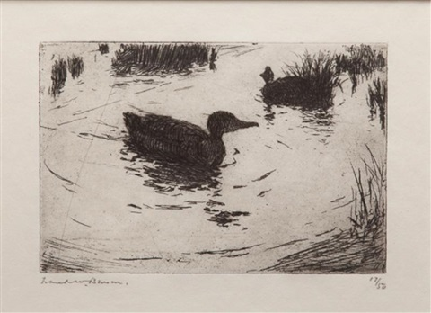 duck and ripples by frank weston benson