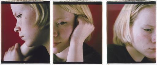 mandy triptych by dawoud bey
