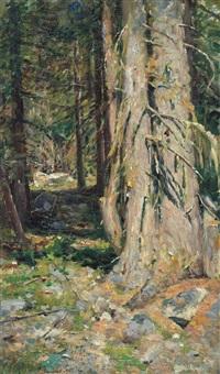alberi by ambrogio raffaele