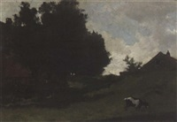 summer landscape with a grazing goat by frederik nachtweh