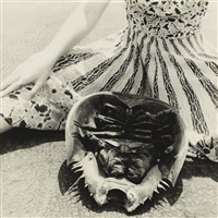 untitled (horseshoe crab, providence) by francesca woodman