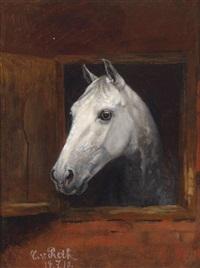 portrait eines schimmels by caspar von reth