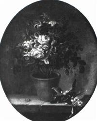 rosier dans un vase by louis tessier