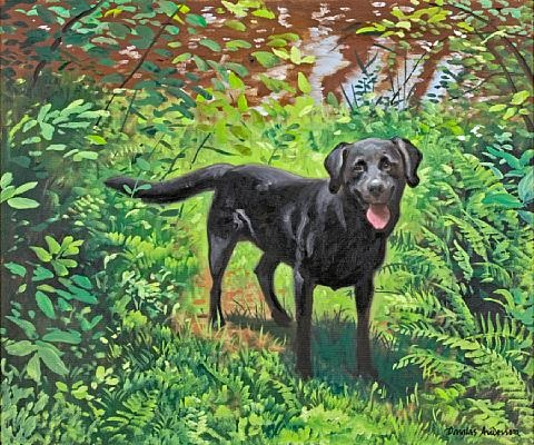 a black labrador retriever in a landscape by douglas anderson