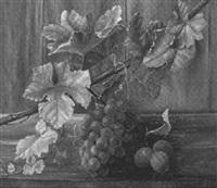 weintrauben by alfrida baadsgaard