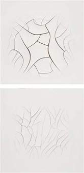 monocromo branco no.3 (+ no.4; 2 works) by adriana varejao