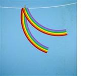 wet rainbow for david by patrick hughes