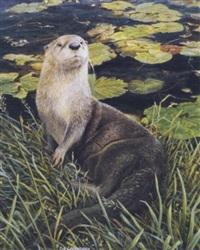 otter by liz lesperance