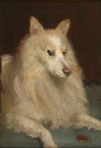 a white border collie by john knox ferguson