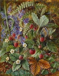 wild strawberries and a butterfly, veronica fern and moss by albert durer lucas