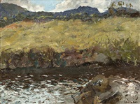 river in connemara landscape by james le jeune