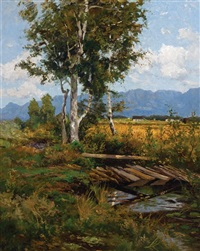 toward the adirondacks by homer dodge martin