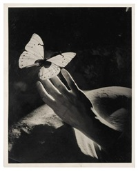 surrealist studies with hands and butterflies by peter rose pulham