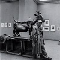 portrait de picasso à la chèvre by michel sima