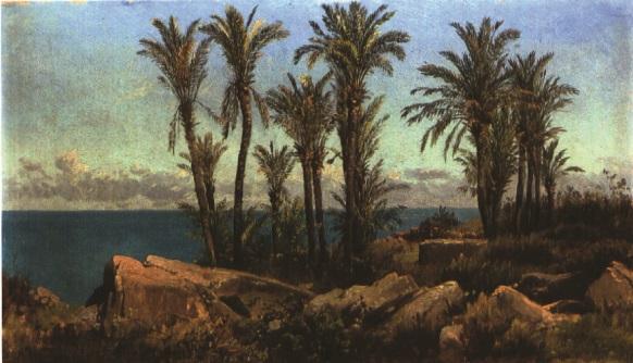 meeresküste mit palmen by adalbert waagen