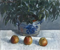 still life of potplant and apples by marysia donaldson