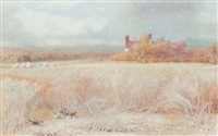 ducks in a cornfield by william hill
