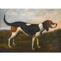 beagle in a landscape by british school (19)