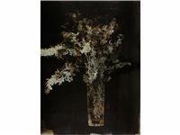 le bouquet de lilas by joan fontcuberta