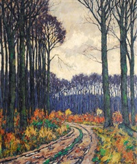 bentheimer forest with a clearing by elisabeth zu bentheim
