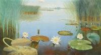 water lilies in the loosdrechtse plassen by dirk smorenberg