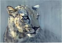 tête de guépard by mark adlington