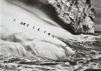 chinstrap penguins (pygoscelis antartica) on an iceberg located between zavodovski and visokoi islands, south sandwich islands by sebastião salgado