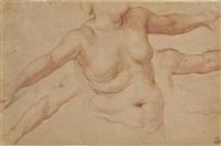 buste de femme nue, et études subsidiaires de ses bras by simone pignoni