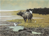 buffalo with cattle egrets by robert bateman